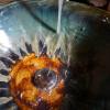 洗面所 陶器の写真