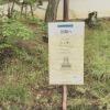 奈良大和郡山の「ちんゆいそだてぐさ2015」に行ってきた。